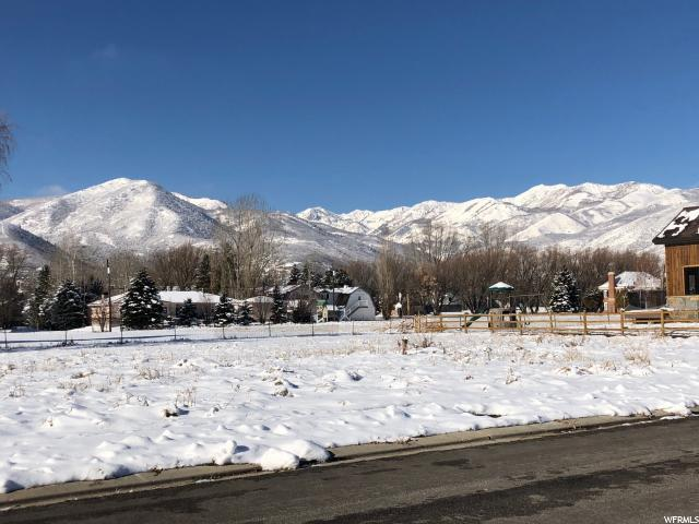 655 N Sunflower Ln, Midway, UT 84049 (MLS #1570819) :: High Country Properties