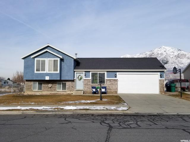 484 W 2125 N, Harrisville, UT 84414 (#1572002) :: Colemere Realty Associates