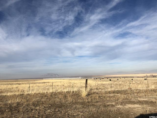 290 Taylor Rd, Grantsville, UT 84029 (MLS #1572009) :: Lawson Real Estate Team - Engel & Völkers