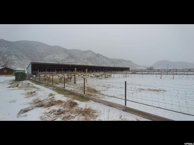 1100 N Cove View Rd, Elsinore, UT 84724 (#1572985) :: Colemere Realty Associates