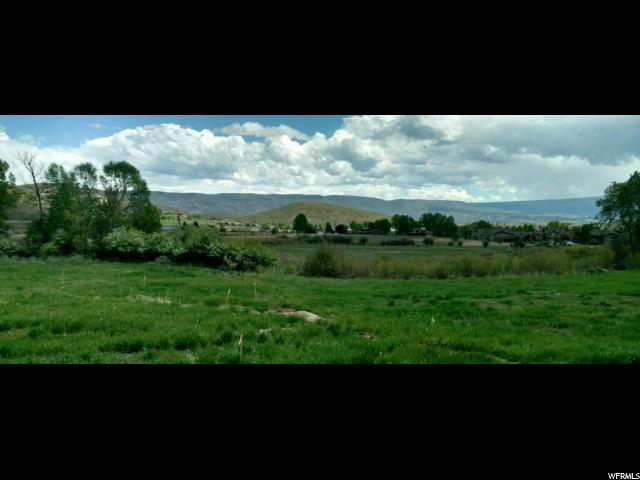 1202 Homestead Dr, Midway, UT 84049 (MLS #1574304) :: High Country Properties