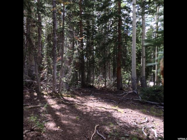 1 E Beaver Cyn, Beaver, UT 84713 (#1574506) :: Bustos Real Estate | Keller Williams Utah Realtors
