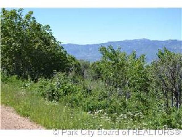 1021 Elk Rd, Wanship, UT 84017 (MLS #1575273) :: High Country Properties