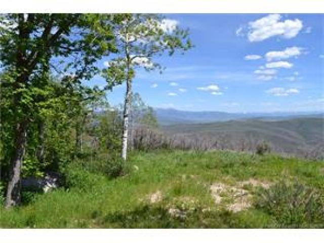 2980 Forest Meadow Rd, Wanship, UT 84017 (MLS #1577298) :: High Country Properties