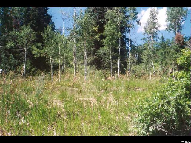 1171 Oak Rd, Wanship, UT 84017 (MLS #1577925) :: High Country Properties