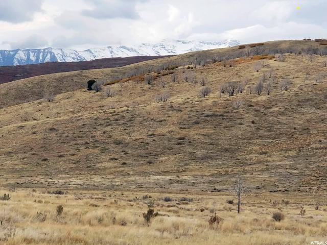 66 E Big Hollow Rd S, Fairview, UT 84629 (#1578331) :: Colemere Realty Associates