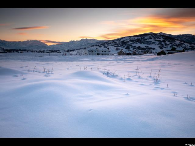 738 E Dutch Canyon Dr, Midway, UT 84049 (MLS #1578610) :: High Country Properties