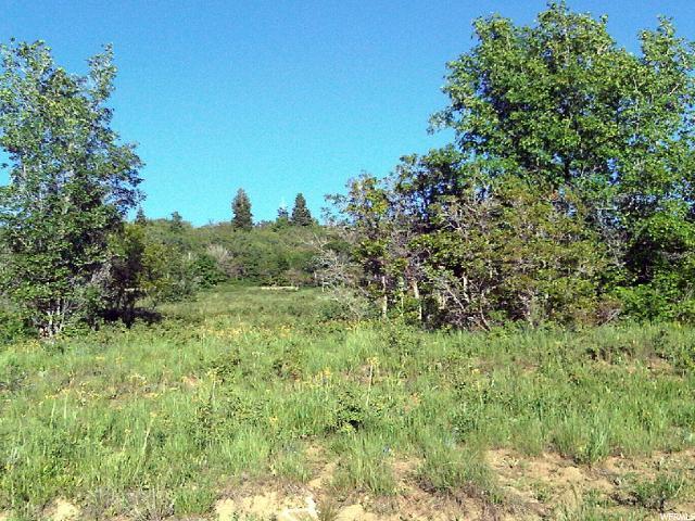 936 Juniper Dr E, Fairview, UT 84629 (#1579861) :: Bustos Real Estate | Keller Williams Utah Realtors