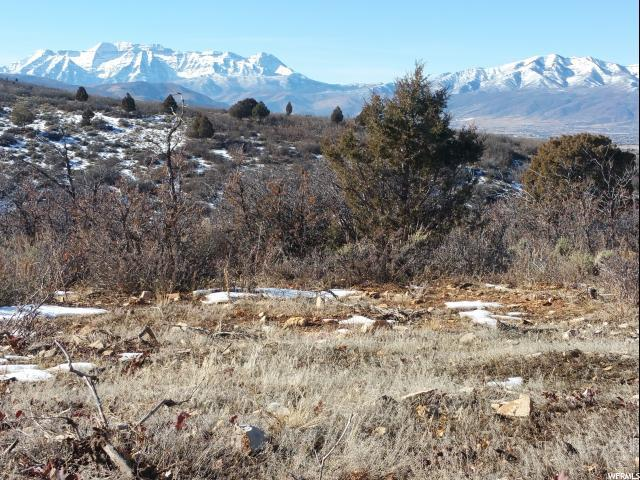 7269 E Oakview Dr S, Heber City, UT 84032 (MLS #1582563) :: High Country Properties