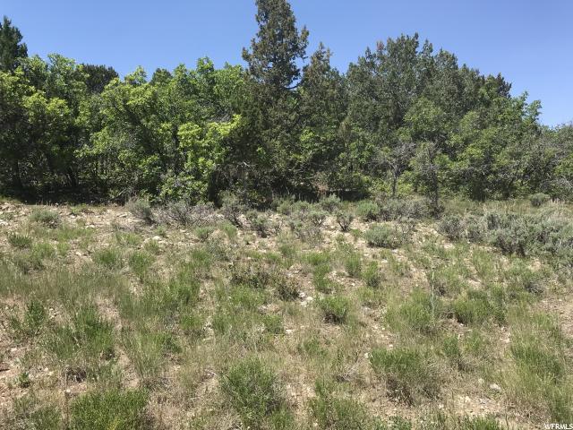 172 Valley View Rd, Mount Pleasant, UT 84647 (#1585554) :: Bustos Real Estate | Keller Williams Utah Realtors