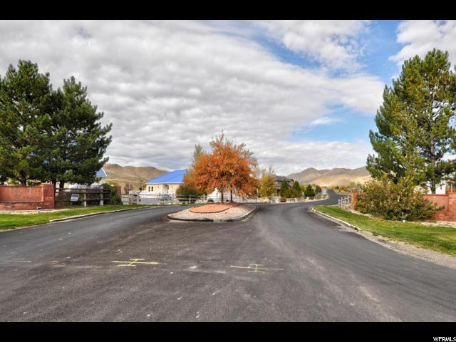 1384 E Abigail Ln, Eagle Mountain, UT 84005 (#1586457) :: Big Key Real Estate
