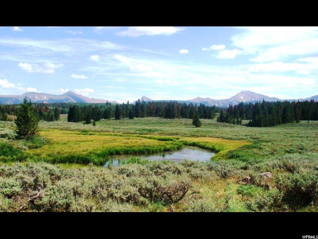 1 Forest Rd #803, Kamas, UT 84036 (MLS #1587317) :: High Country Properties