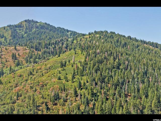 7331 Pine Ridge Dr - Photo 1