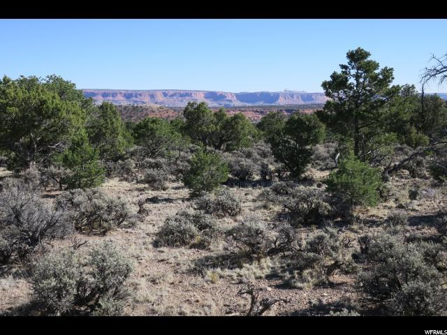 1650 S Donkey Flats Rd E, Teasdale, UT 84773 (#1591626) :: RE/MAX Equity