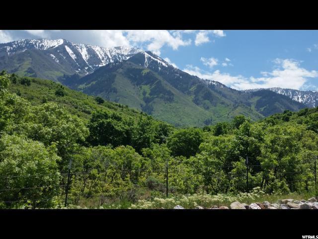 875 S Summit Creek Drive, Woodland Hills, UT 84653 (#1592242) :: Keller Williams Legacy