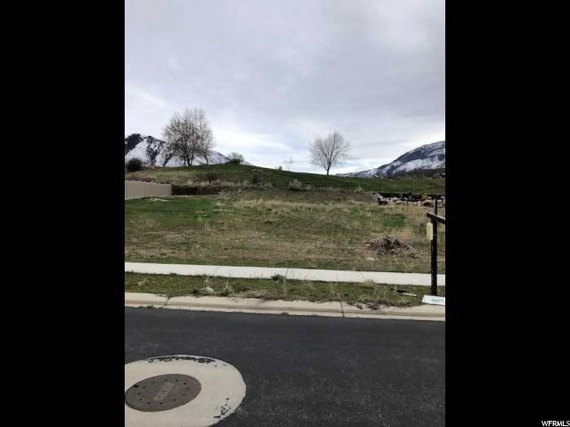 429 W Olympic Ln, Elk Ridge, UT 84651 (#1593651) :: Red Sign Team