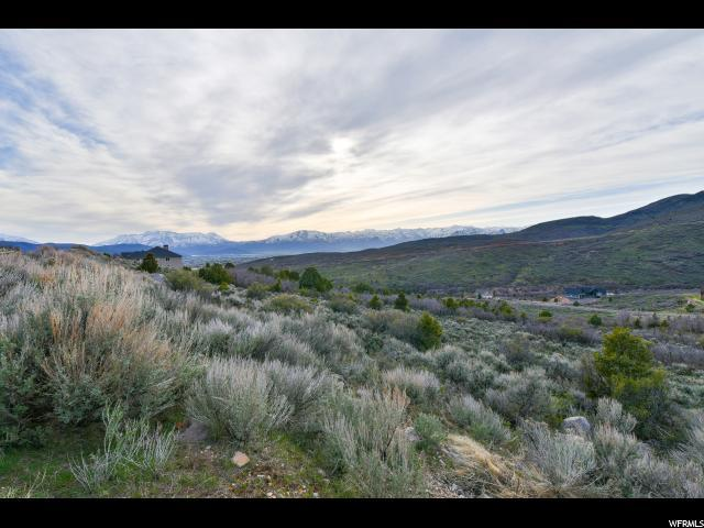 395 S Pole Dr, Heber City, UT 84032 (#1597044) :: Colemere Realty Associates