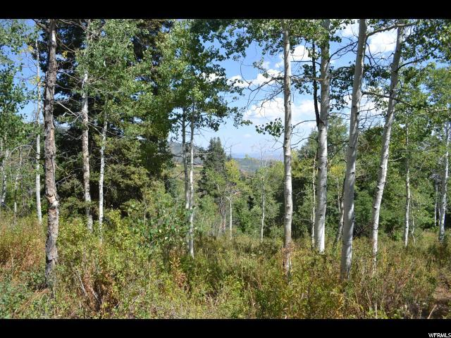 2278 Forest Meadow Rd, Wanship, UT 84017 (MLS #1597095) :: High Country Properties