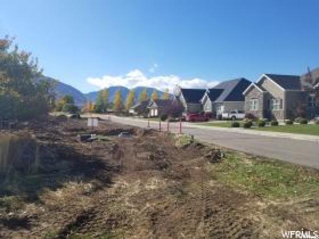 1135 N 1000 E, Mapleton, UT 84664 (MLS #1597367) :: Lawson Real Estate Team - Engel & Völkers