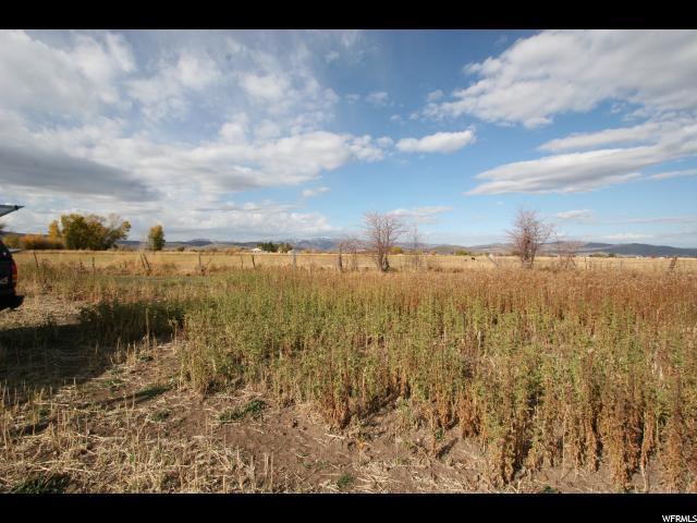 1586 S Stewart Ln, Kamas, UT 84036 (MLS #1597610) :: High Country Properties