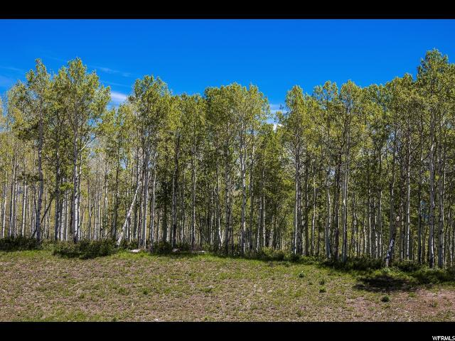10900 E Silver Spur Cir Lot #70, Woodland, UT 84036 (#1599045) :: Colemere Realty Associates