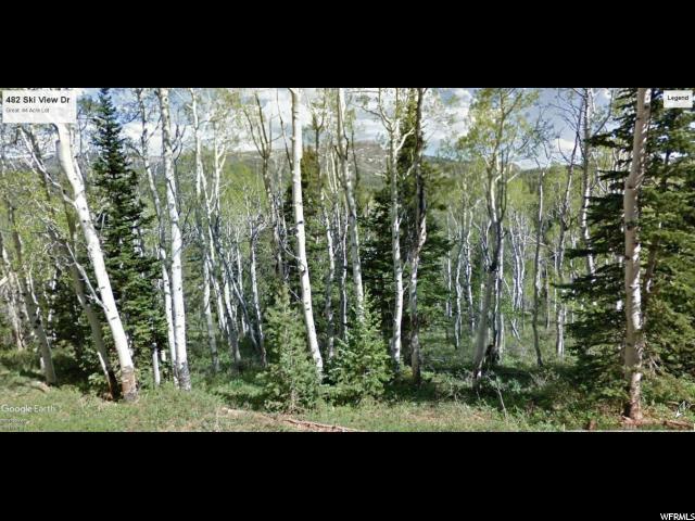 482 Ski View Dr, Brian Head, UT 84719 (#1600628) :: RE/MAX Equity