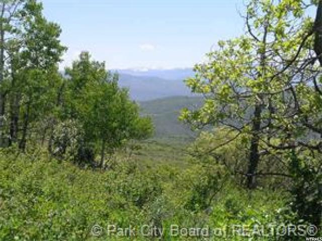 2264 Forest Meadow Rd, Wanship, UT 84017 (MLS #1600887) :: High Country Properties