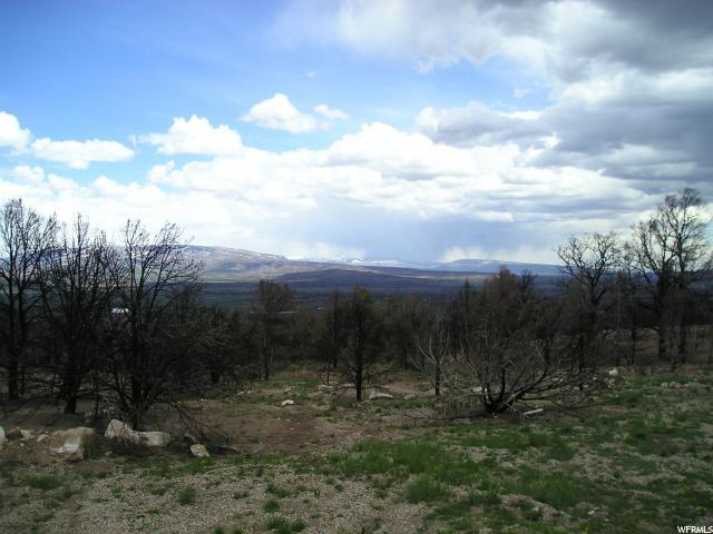 45347 W 8700 S, Fruitland, UT 84027 (#1601250) :: Von Perry | iPro Realty Network
