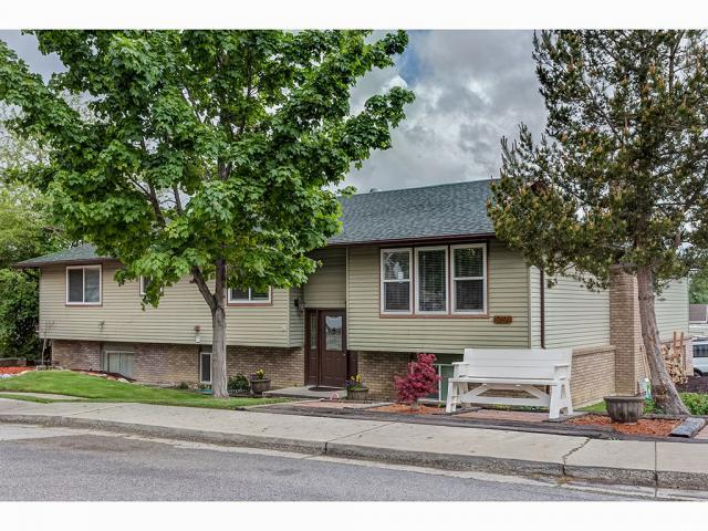 919 N 900 E, Pleasant Grove, UT 84062 (#1602569) :: Red Sign Team