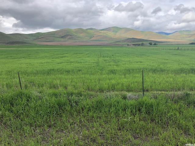 Address Not Published, Malad City, ID 83252 (#1603260) :: Colemere Realty Associates