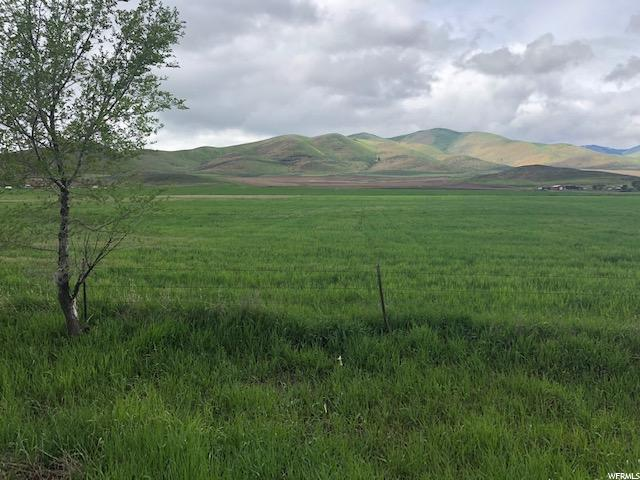 Address Not Published, Malad City, ID 83252 (#1603263) :: Colemere Realty Associates