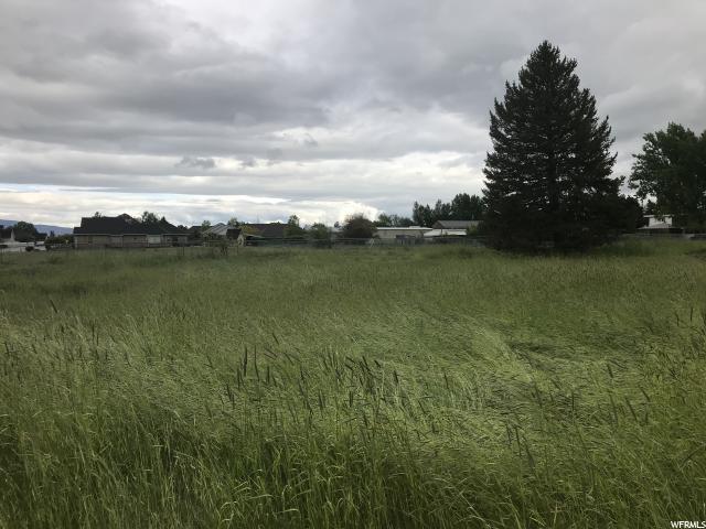 1482 N 1080 E, Mapleton, UT 84664 (#1603812) :: Colemere Realty Associates