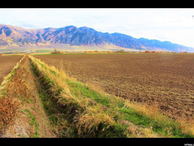 Address Not Published, Elwood, UT 84337 (#1604119) :: The Fields Team