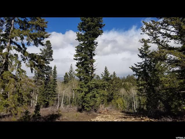 17768 S Solitude E, Spanish Fork, UT 84660 (#1604220) :: The Muve Group