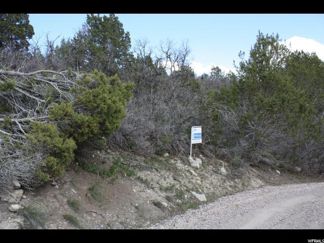 445 Silvercreek Dr, Mount Pleasant, UT 84647 (#1604778) :: Exit Realty Success