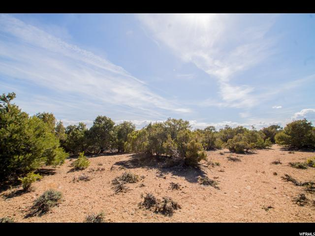 Address Not Published, Talmage, UT 84073 (#1606478) :: Colemere Realty Associates