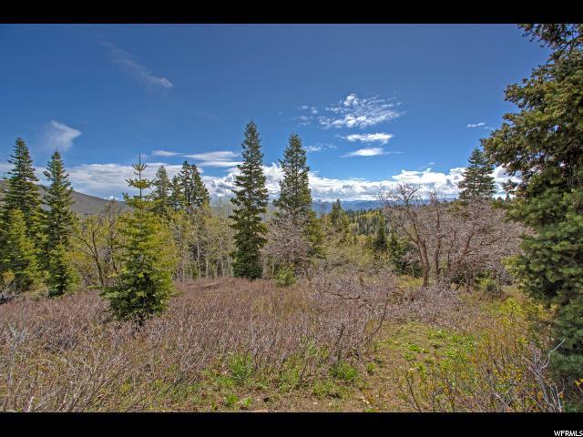 2166 Running Deer Circle, Coalville, UT 84017 (MLS #1606912) :: High Country Properties