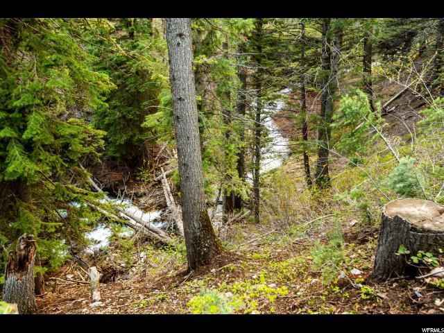 2660 Alpine Loop Rd - Photo 1