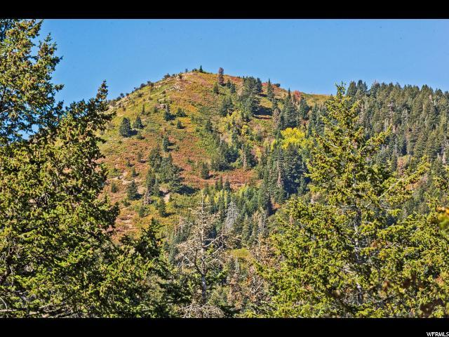 225 E Matterhorn Dr, Park City, UT 84098 (MLS #1608486) :: High Country Properties