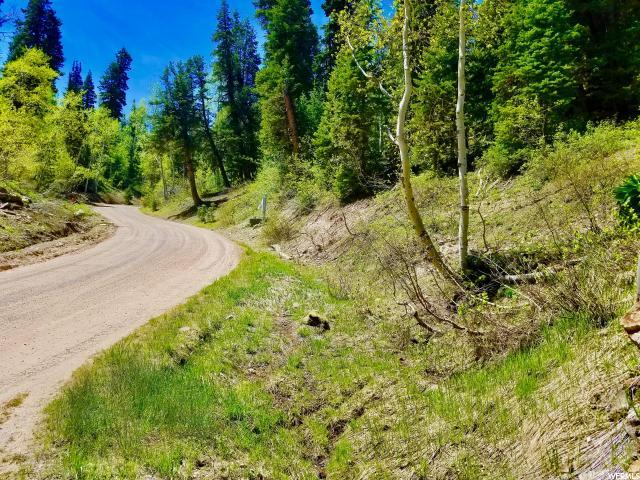 2342 Pine Meadow Dr, Wanship, UT 84017 (MLS #1609300) :: High Country Properties