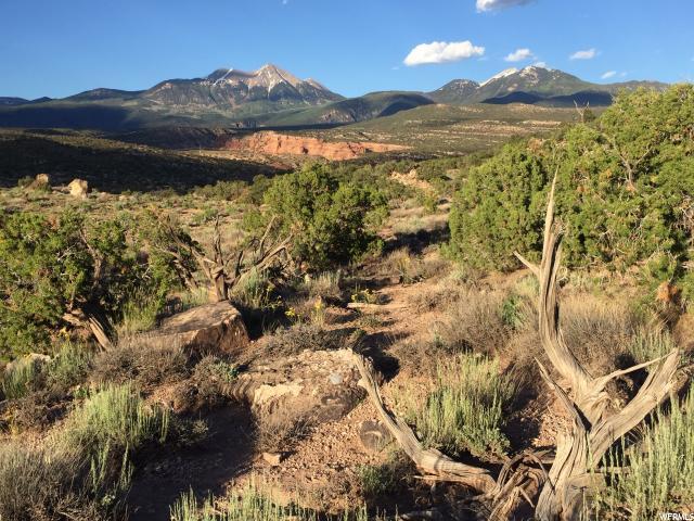 37 Kane Canyon Dr19 - Photo 1