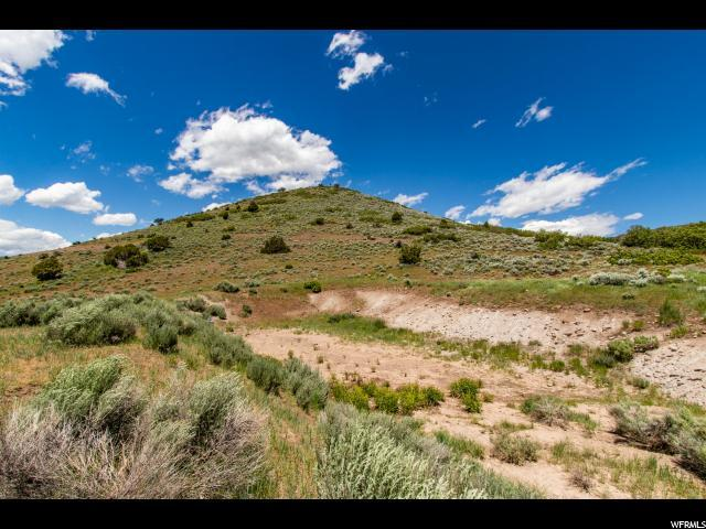 1077 N Westward Ho Rd, Heber City, UT 84032 (MLS #1611625) :: High Country Properties