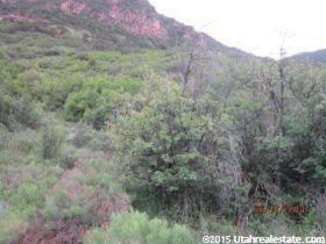 2867 E Weber Canyon Rd, Oakley, UT 84055 (MLS #1613349) :: High Country Properties