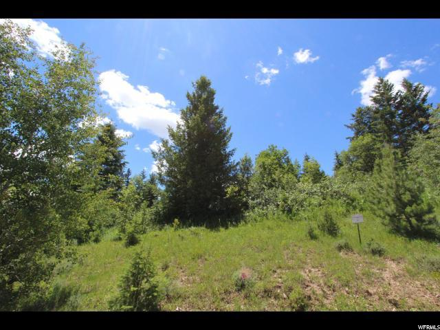 26 Deer Crk, Lava Hot Springs, ID 83246 (#1613381) :: Colemere Realty Associates