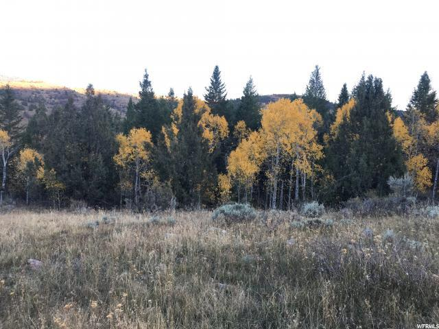 29 Deer Crk, Lava Hot Springs, ID 83246 (#1613531) :: Colemere Realty Associates