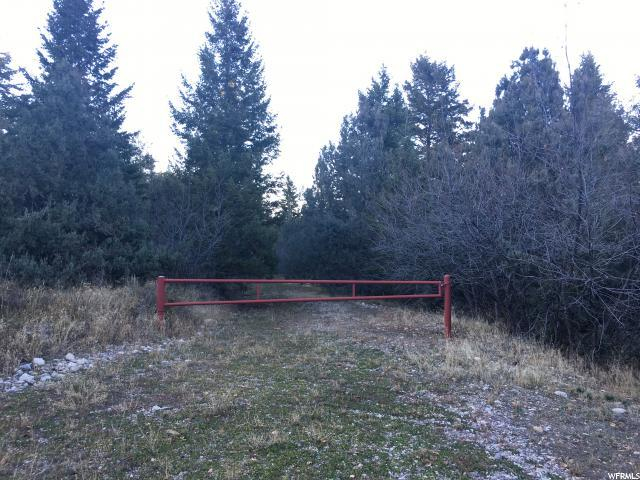 Address Not Published, Lava Hot Springs, ID 83246 (#1613592) :: Colemere Realty Associates
