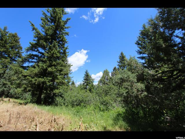 31 Deer Crk, Lava Hot Springs, ID 83246 (#1613602) :: Colemere Realty Associates