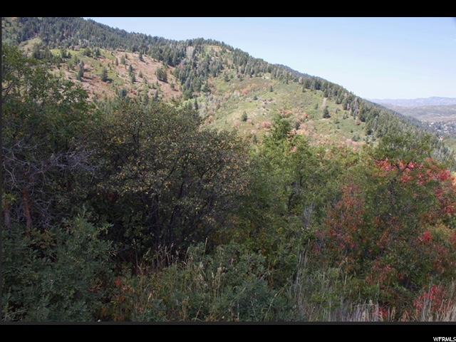 7144 Canyon Dr, Park City, UT 84098 (MLS #1613833) :: High Country Properties