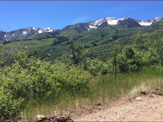 25 Mountain Dr, Springville, UT 84663 (#1614058) :: Colemere Realty Associates
