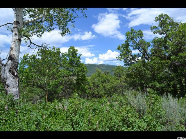 450 Forgotten Ln, Wanship, UT 84017 (MLS #1616700) :: High Country Properties